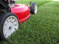 grass_cutting