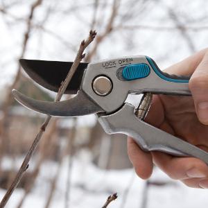 Jim's Mowing Service - Winter Pruning
